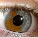 iridology_3